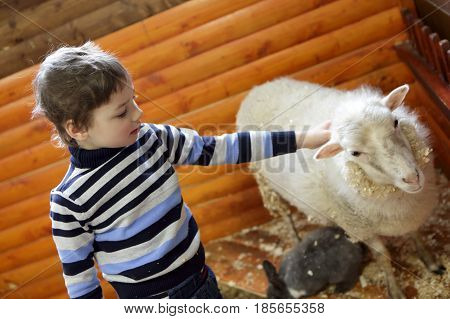 Child Playing With Lamb