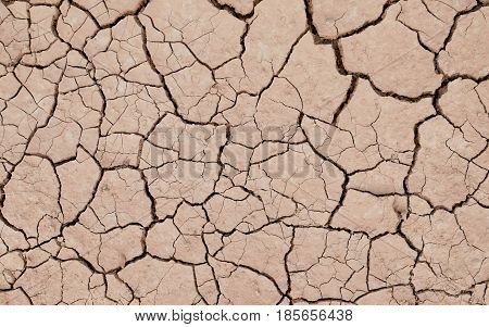 Closeup of dried and cracked soil in arid season. Cracked Ground texture.