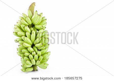 bundle of fresh raw Lady Finger banana  on white background healthy Pisang Mas Banana fruit food isolated