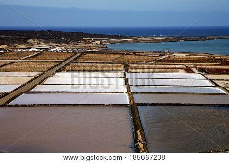 Pond Water Coastline Salt In  Lanzarote Spain Musk  Rock