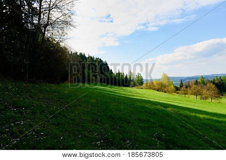 Hillside And Edge Of Forest. Spring Landscape