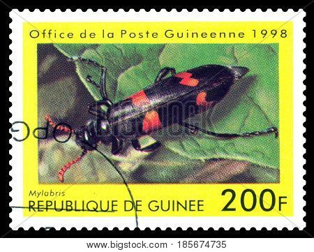 STAVROPOL RUSSIA - April 30 2017: a stamp printed in Guinea (Republique de Guinee) shows Beetle Mylabris series beetle circa 1998