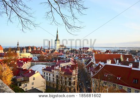 Aerial view on the old town with main central square in Tallin Estonia
