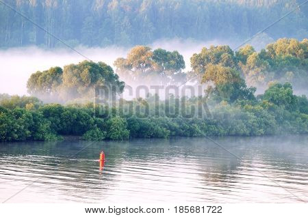 Morning fog at the summer forest river- bird's eye view at early summer morning - soft focus applied. Forest trees near the river in summer sunrise. Forest summer water landscape. Forest in the morning fog in summer sunrise. Summer forest nature