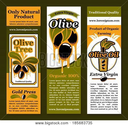 Olive oil product banners set with vector symbols of fresh black olives on branches with dripping extra virgin oil drops from bottles and jars. Design for natural organic cuisine and healthy cooking