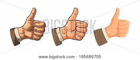 Hand showing symbol Like. Making thumb up gesture. Hand drawn design element. Vector color vintage engraved and flat illustration isolated on white background. Sign for poster web info graphic