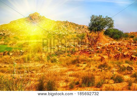 single mountain in India at sunset. bright warm Golden landscape