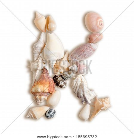 various sea shells capital K on isolated white background with clipping path.
