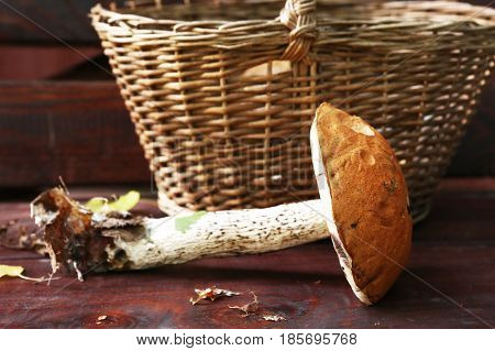 big red cap mushroom beside the wicker basket close up photo