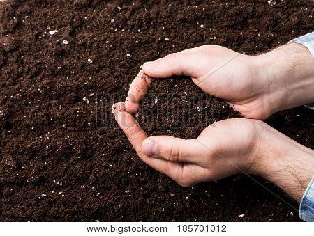 Handful of Rich Brown Soil . top view