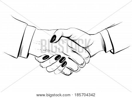 Hand drawn sketch illustration of a handshake. Businessman and businesswoman. Business handshake of man and woman. Partnership. Decorative line. Vector hands.