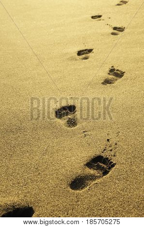 Footprints in the sand at sunset. Sandy beach with footprint path near sea.