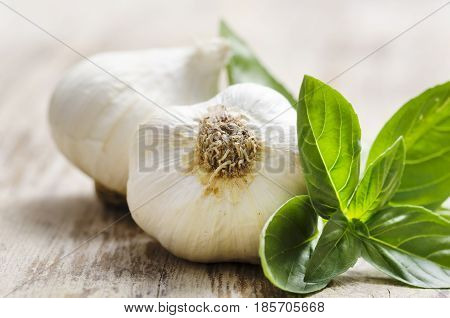 Garlic and basil on wooden table. Healthy food eating.
