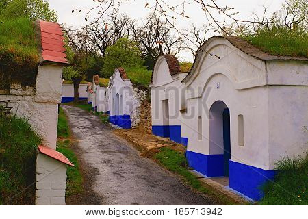 Petrov - Plze, The Czech Republic -  April 17, 2017: Traditional Wine Cellars - Plze, Petrov, Czech