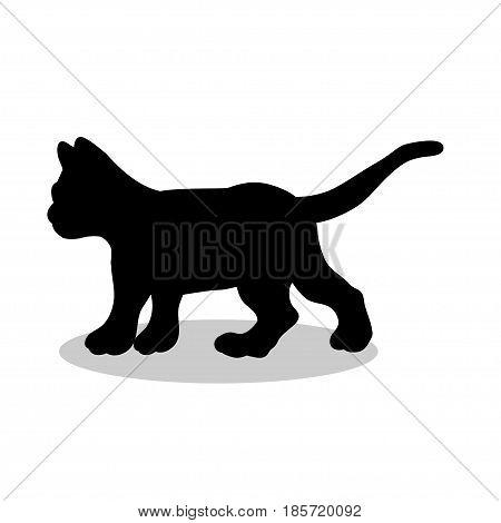 Kitten cat pet black silhouette animal. Vector Illustrator.