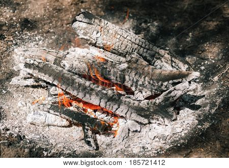 Fire. A Bright Flame. A Breeze On The Nature. Forest Fires. Texture Of Smoking Coals.