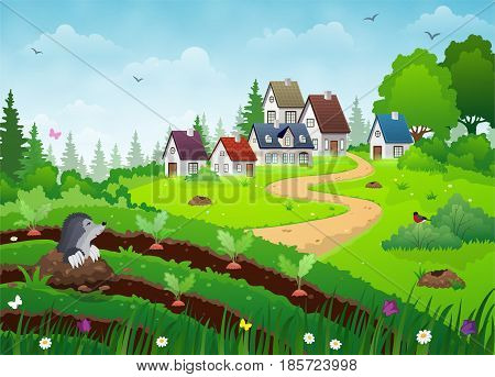 Country village landscape with farm houses vegetable garden and green lawn.