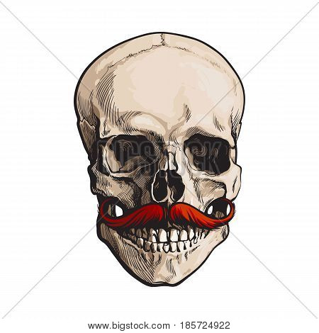Hand drawn human skull with curled upward hipster red moustache, sketch style vector illustration isolated on white background. Realistic front view hand drawing of human skull with moustache, whisker