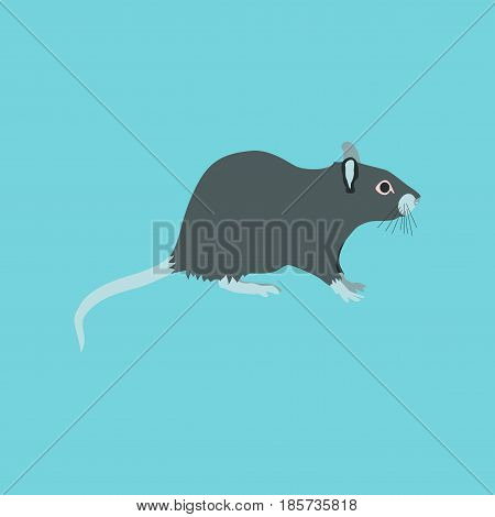 Vector illustration in flat style rat nature