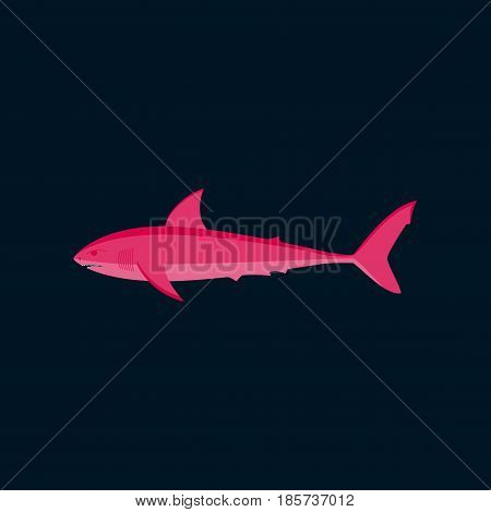 Vector illustration in flat style White shark