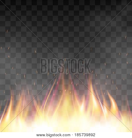 Fiery design template. Graphic element with flame, flaming bonfire. Realistic blazing campfire effect. Vector illustration of fire isolated on black transparent background