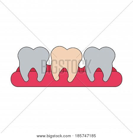 color image cartoon set tooth in gum vector illustration