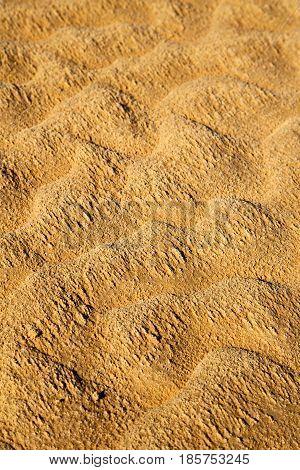 The Sahara Morocco Desert