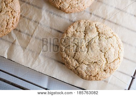 home-baked cookies on the baking sheet and bars