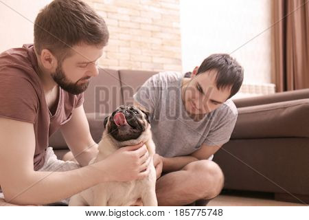 Happy gay couple sitting on floor and playing with pug dog at home