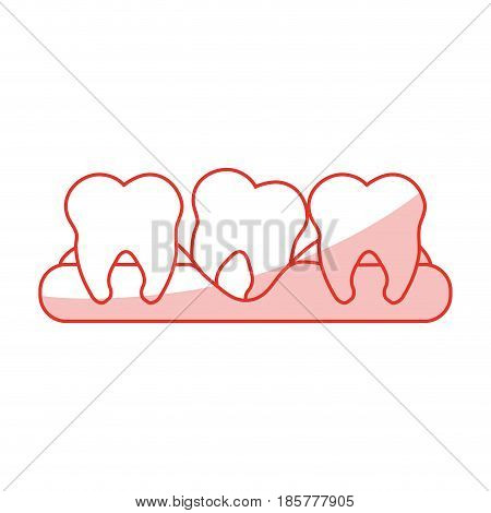 red shading silhouette cartoon set tooth in gum vector illustration