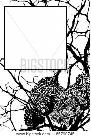 Eagle owl illustration art vector animals theme.