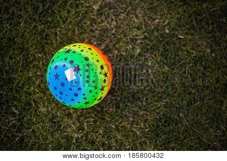 Colorful Ball On Green Grass