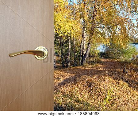 Beautiful golden autumn landscape with lot of fallen yellow leaves after opened wooden door with yellow metal handle