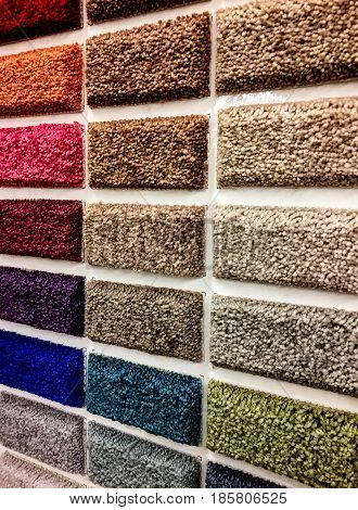 Carpeting. Carpet textures, carpet color selections, sampler of carpets, carpet color samples, wall picker of carpet colors, rectangular color samples of carpet, store carpet colors, colorful samples of home carpet, residential carpets, commercial carpets