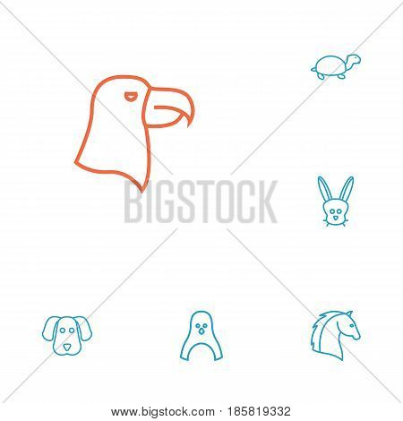 Set Of 6 Brute Outline Icons Set.Collection Of Dog, Eagle, Turtle And Other Elements.