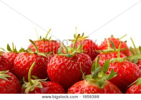 Strawberries With Room For Copy