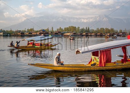 SRINAGAR INDIA - APRIL 9 2017 : Lifestyle in Dal lake local people use Shikara a small boat for transportation in Dal lake a famous tourist attraction of Srinagar Jammu and Kashmir state India