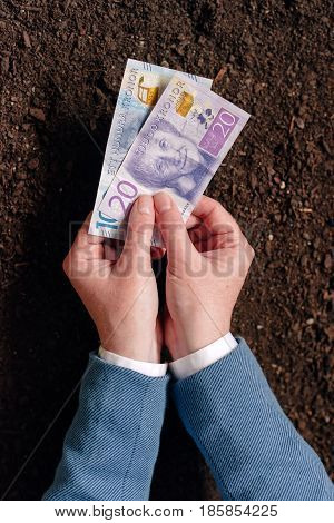 NOVI SAD SERBIA - MAY 05 2017: Bank loan in Swedish currency SEK for agribusiness startup hand offering cash money banknotes as credit and allowance for starting a business illustrative editorial
