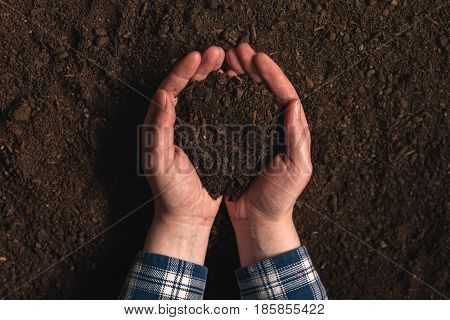 Soil fertility analysis as agricultural activity female farmer holding arable ploughed dirt in cupped hands