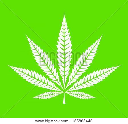 Cannabis leaf icon vector illustration on green background