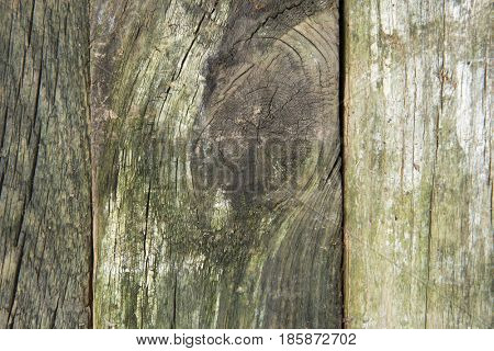 Old wood (granary board) grunge wooden background