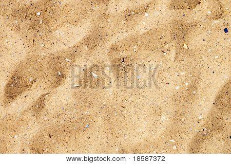 sand closeup as texture