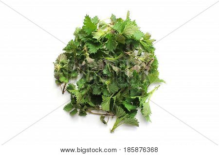 Young nettles as a circle background on the white background. Herb for spring collection and detoxification.