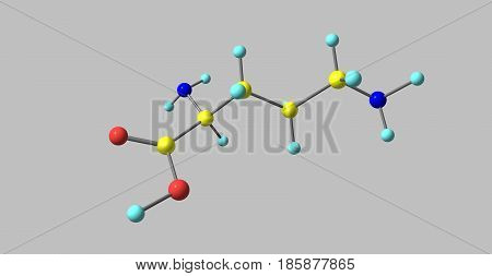Ornithine is a non-proteinogenic amino acid that plays a role in the urea cycle. Ornithine is abnormally accumulated in the body in ornithine transcarbamylase deficiency. 3d illustration