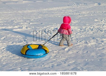 Little girl drags bright snowtube on snow at winter day back view