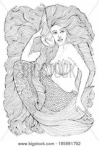 Vector drawing fantastic sea mermaid with long wavy hair holds a seashell. Ornamental decorated graphic illustration of a mermaid tattoo. Coloring  page sea nymph. Fairy tale characters.
