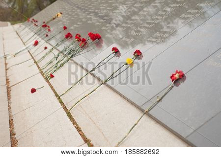 Red carnations on the memorial to fallen heroes during the second world war, dead flowers, victory day