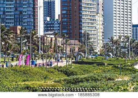 Vegetation On Beachfront Against City Skyline In Durban
