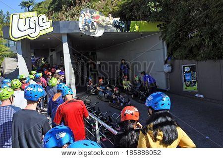 People Line Up To Skyline Rotorua Luge Ride