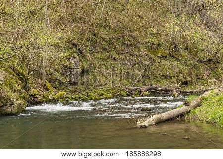 A scenic river landscape in the spring.